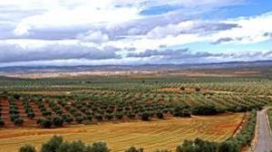 Las tierras raras de La Mancha se quedan donde están