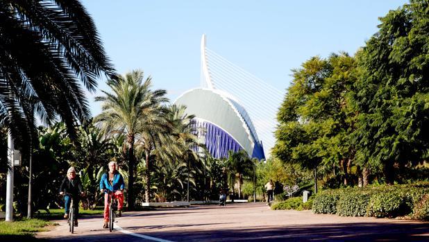 Imagen del Jardín del Turia con la Ciudad de las Artes y las Ciencias al fondo