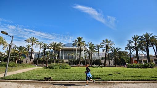 Imagen del Jardín del Turia al paso por el Palau de la Música