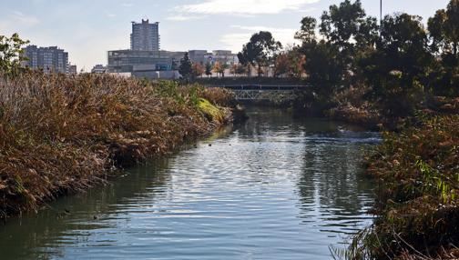 Imagen del Jardín del Turia