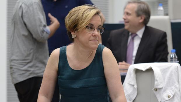 La portavoz del PSOE en el Ayuntamiento de Madrid, Purificación Causapié