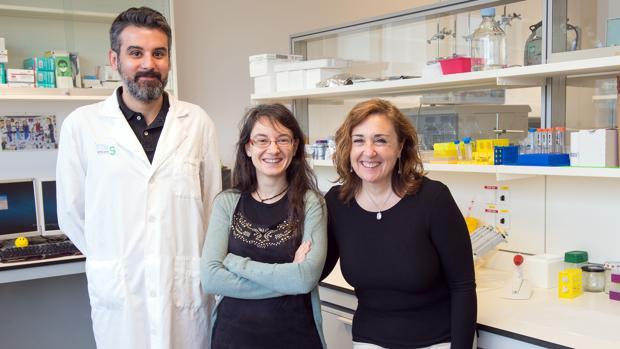 La doctora María Concepción Serrano López-Terradas, la doctora Elisa López Dolado y el investigador Francisco Ankor Gonzále