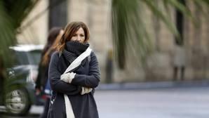 Ola de frío: los primeros copos de nieve caen en el interior de Alicante