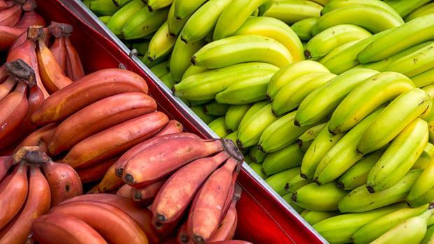 Plátanos para todos los gustos