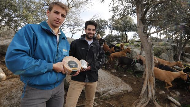 Isaac y César del Río posan para ABC con dos de los quesos premiados, junto a un rebaño de cabras