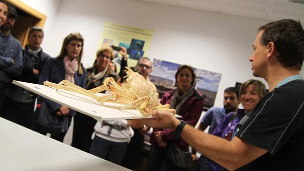 Valencia el oceanogr fic celebra este s bado el d a del for Promociones oceanografic
