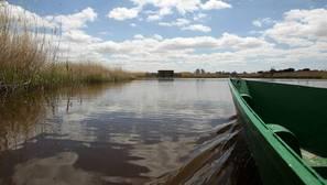 Una barca navega por uno de los humedales de las Tablas de Daimiel