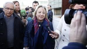 Varios concejales investigados por blanqueo piden al juez el sobreseimiento tras el archivo a Domínguez