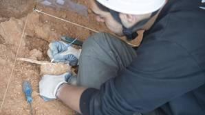 Yacimiento en Atapuerca