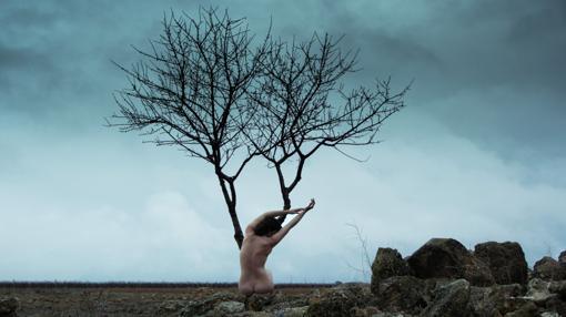 «Xilema», es una de las 24 fotografías de la muestra «Génesis, tierra y piel»