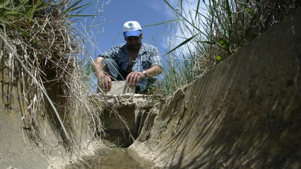 Desde el año 2012, Aragón ha perdido 7.000 agricultores y ganaderos, un sector que está también muy envejecido