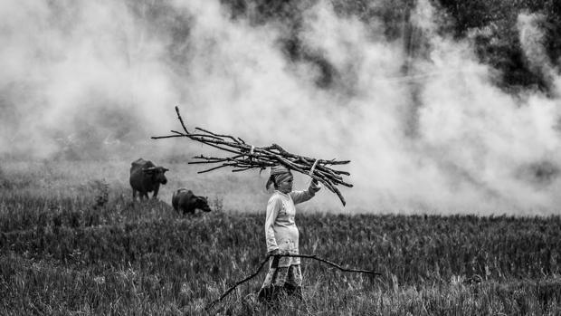 Fotografía ganadora en la categoría de mejor participante extranjero en el Concurso «Helie Memorial»