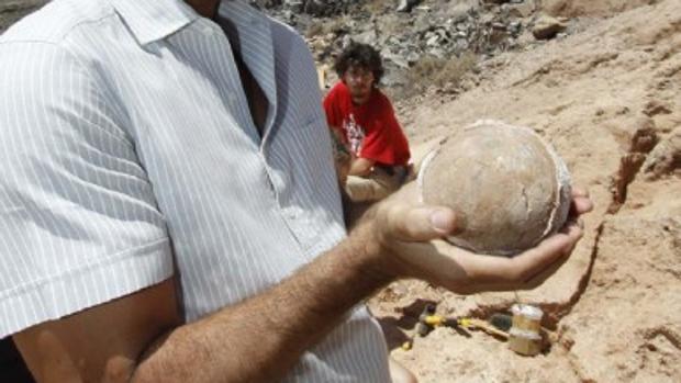 Uno de los fósiles de aves encontrados en Lanzarote