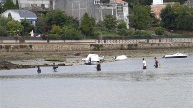 Grupo de pescadores furtivos realizando labores de recolección