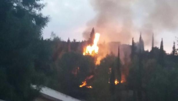 Incendio declarado este miércoles en una pinada de Pedralba