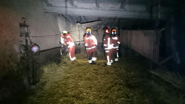 Imagen de los bomberos en el interior de la granja calcinada