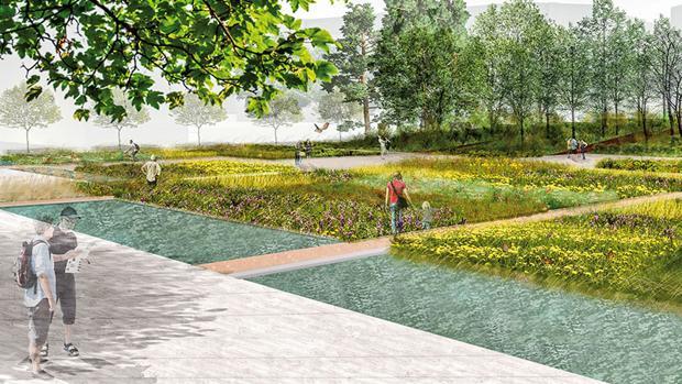 Imatge del projecte del Jardí Botànic de la Universitat de València