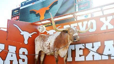 Una mascota de una universidad de Texas