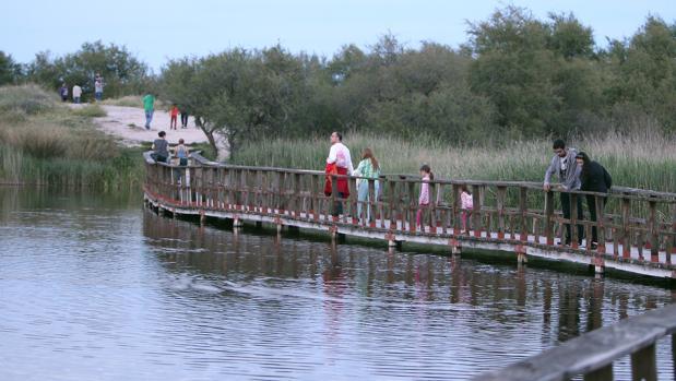 Visitantes pasean por la pasarela de las Tablas de Daimiel