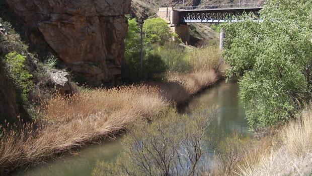 El Jalón en las inmediaciones de Embid de la Ribera (Calatayud), donde arrancará el túnel de trasvase para llenar el futuro embalse de Mularroya