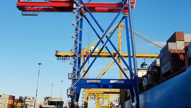 Detalle de la nueva grúa de Noatum en el puerto de Valencia
