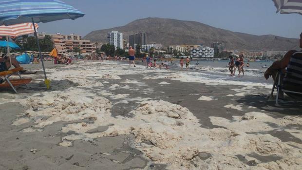 Algas secas con, presuntamente, aguas fecales en Playa de Los Cristianos, Tenerife, este jueves