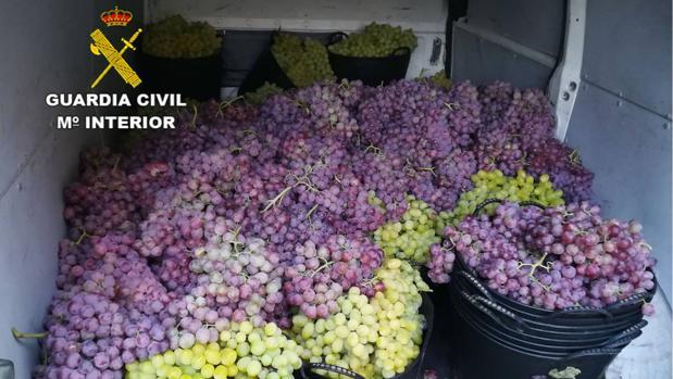 Imagen de la furgoneta con las uvas robadas