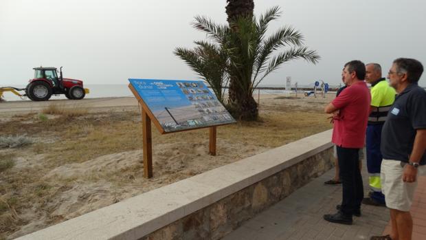 Josep Bort visita l'ecosistema dunar de la platja de Puçol
