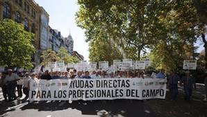 La pancarta «Ayudas directas para los profesionales del campo» encabeza la manifestación