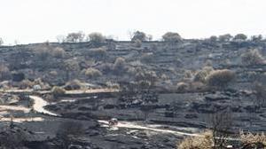 Paisaje desolado tras el paso del fuego en la localidad zamorana de Fermoselle