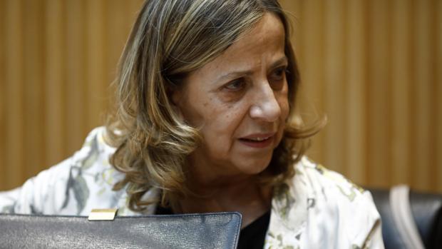 Carmen Navarro, en el Congreso de los Diputados, en una imagen de archivo