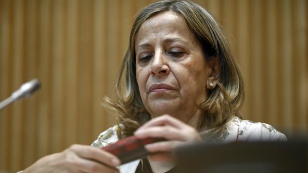 El juez del caso taula cita a la tesorera nacional del pp - Carmen navarro en sevilla ...