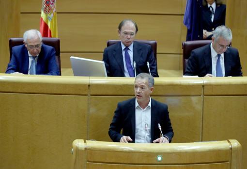 Ander Gil, portavoz socialista en el Senado