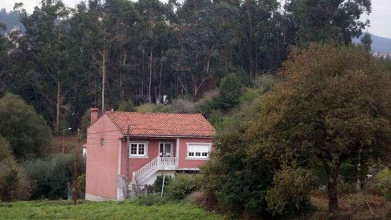 Los l mites al eucalipto se endurecen para alejar los incendios de las casas - Como alejar las ratas de la casa ...