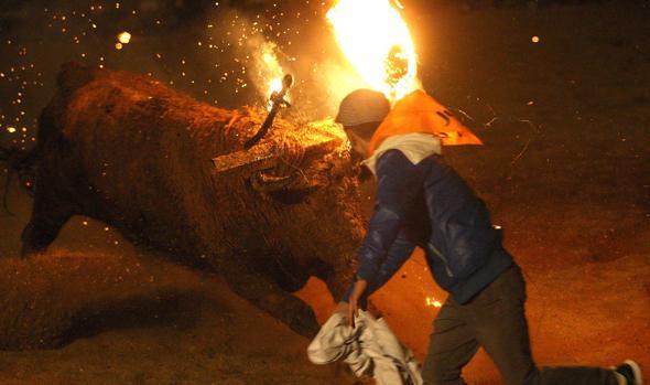 Celebración del tradicional Toro Jubilo en la localidad soriana de Medinaceli en una imagen de archivo