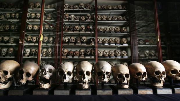Cráneos de antiguos canarios en la Universidad de Edimburgo