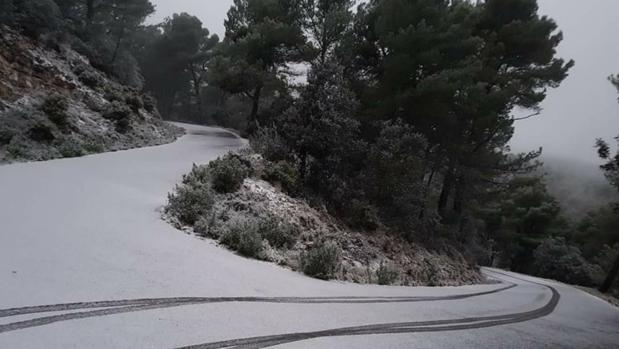 Foto difundida por la Universidad de Alicante, de Xenar Xen en L'Alt de les Xemeneies (Sierra del Maigmó)