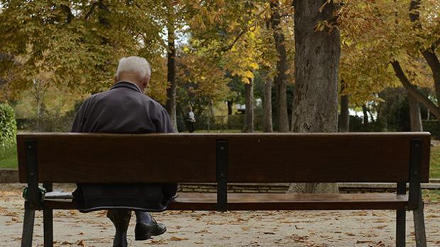 Un anciano lee en un parque