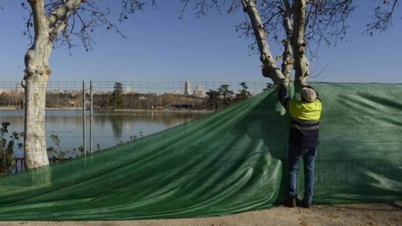 Vaciado del lago de la Casa de Campo: «Eutanasia» para 6,5 toneladas ...