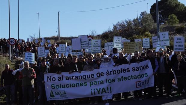 Un momento de la manifestación de este sábado entre Guadalest y Benimantell
