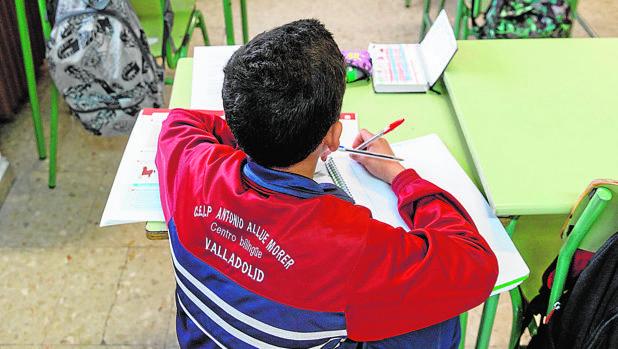 El colegio Allúe Morer de Valladolid es uno de los que se sumarán a este proyecto contra los «guetos» educativos