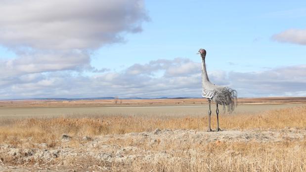 Agosto extremo en pleno enero. Escultura de una grulla ante el desnudo paisaje que debería estar lleno de agua