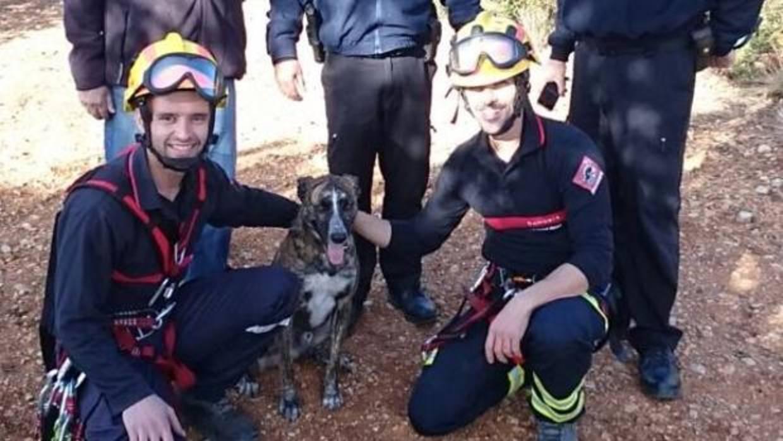 Vídeo: los Bomberos rescatan a un perro tras caer a un aljibe abandonado cuando perseguía a un conejo