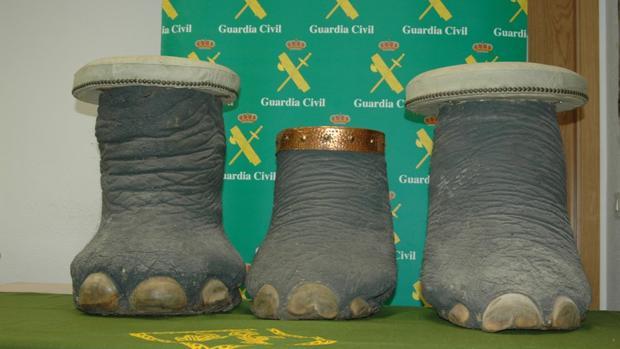 Las tres patas de elefante africano intervenidas por la Guardia Civil