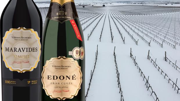 Imagen de dos de los vinos elaborados por Bodegas Balmoral, situada a 1.000 metros de altitud