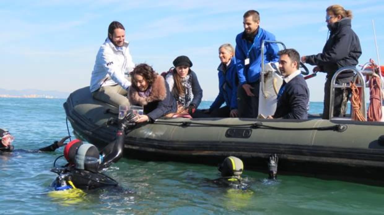 El oceanogr fic de valencia suelta veinte tiburones for Promociones oceanografic