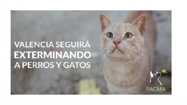 Imagen difundida por el PACMA