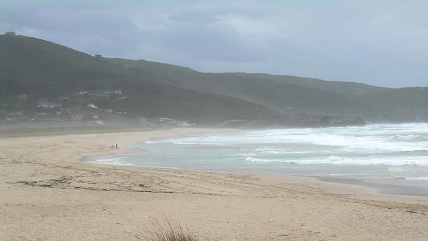 Pinar de la playa de Doniños, al fondo