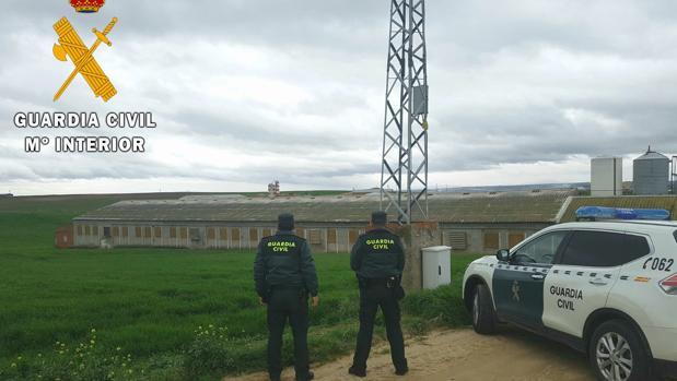 Dos agentes junto a una de las explotaciones agrarias en la que robó el detenido