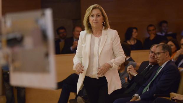 La delegada del Gobierno, Concepción Dancausa